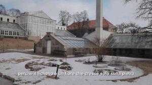 Su La neve nera - Luigi Di Ruscio a Oslo, di Marzoni e Ferracuti