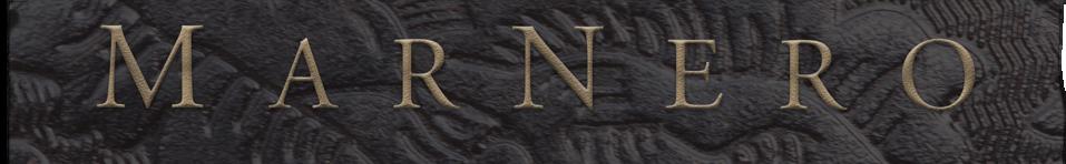 QVLNIF_header copy